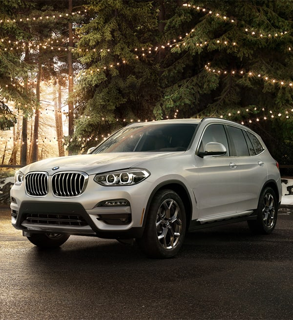 2021 BMW X3 in a forest