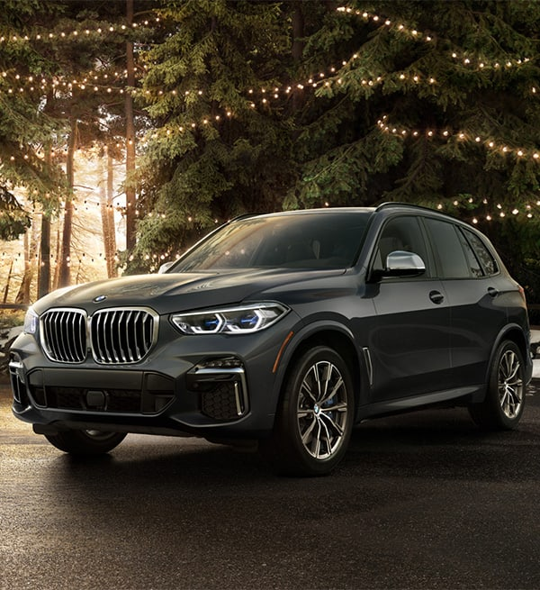 2021 BMW X5 in a forest