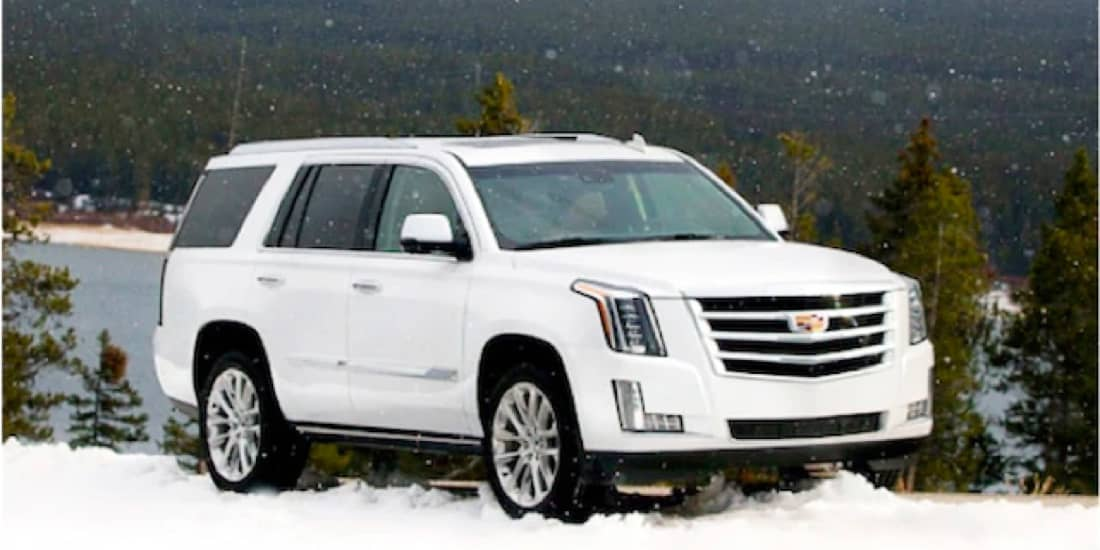 2020 White Cadillac Escalade Using 4-Wheel Drive