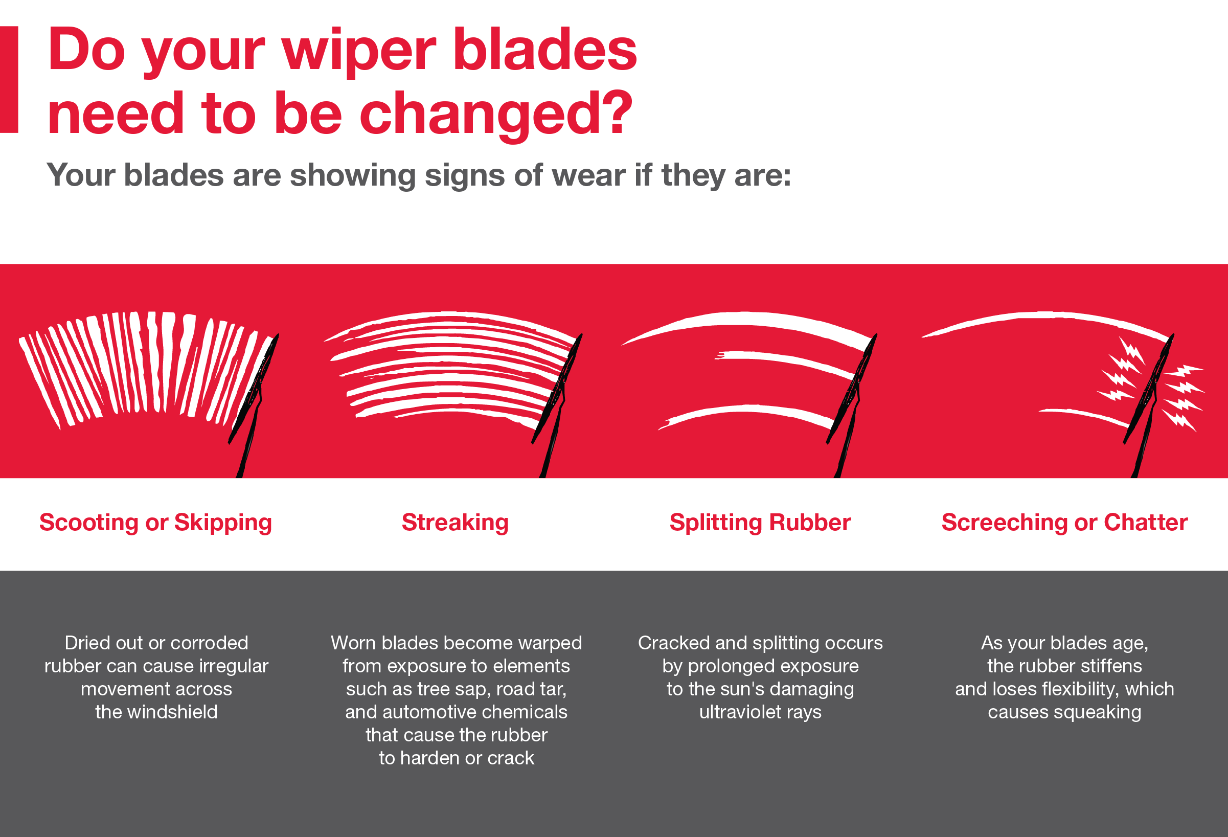 Do your wiper blades need to be changed? Call your local dealer for more info: 800-971-5896